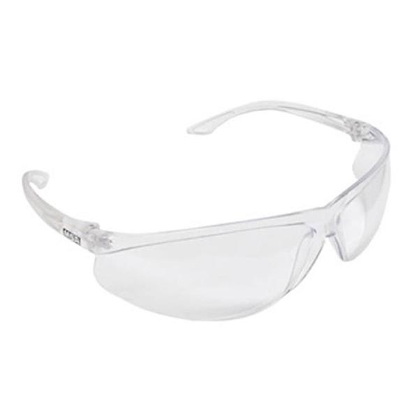 Óculos modelo Sparrow - Incolor